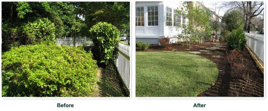 landscape makeover before after